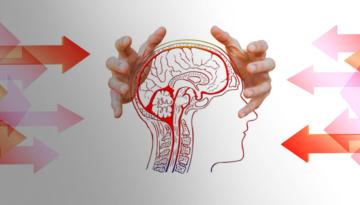 Métodos de análisis psicosocial en las organizaciones