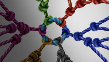 Implantar un sistema de gestión CAE en las empresas, una realidad hoy