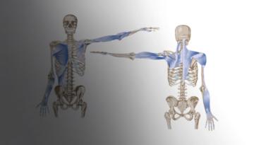 Valoraciones ergonómicas con electromiografía